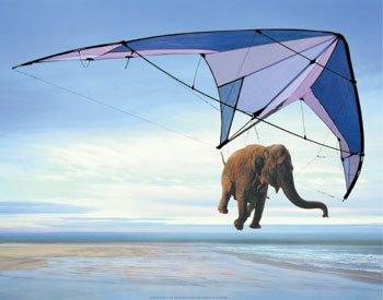 elephant-hang-gliding.jpg